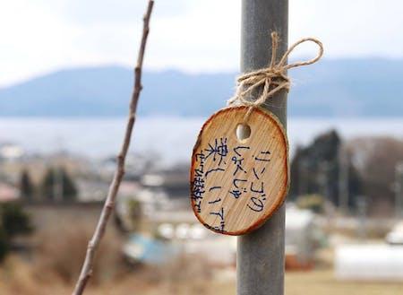 市民植樹会に参加した小学生からのメッセージ