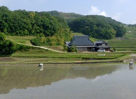 淡河地域の田園風景