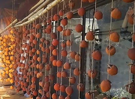 秋~冬にかけては軒先が柿簾に