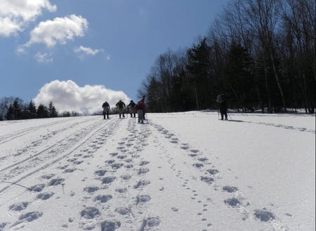 スノーシューを履いて、新雪に足跡