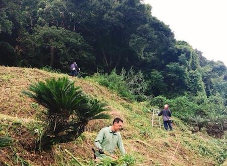 共同作業の草刈りで自分たちで集落景観を守ります