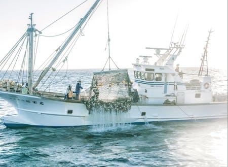 日本でも有数の水揚げ量を誇るホタテ漁の様子。