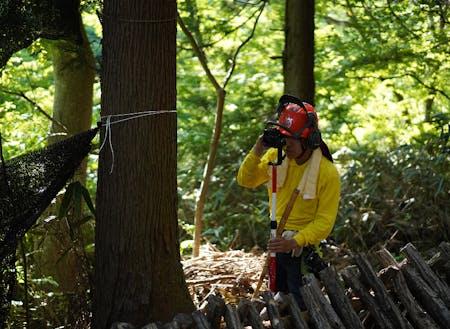 フィールドとなる森の健康状態を観察するのも大事な仕事の一つ