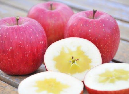 三陸の風土の結晶、米崎りんごの代名詞 「蜜入りサンふじ」