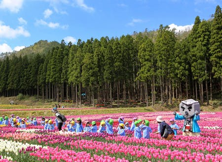100万本のたんとうチューリップまつり(春)