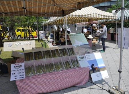 毎年東京で行っているマルシェでのアスパラ販売の様子