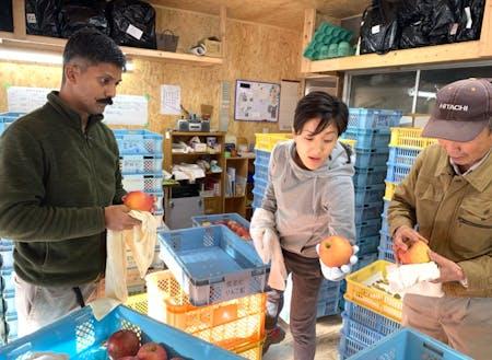 東京からリンゴ磨きを手伝いに10名来てくれました!