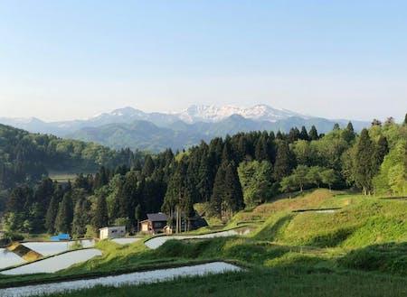 世界的アウトドアブランド「snow peak」の本社も下田にあります。