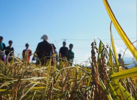 農業の可能性を一緒に考えよう!