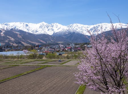 絶景に溢れる白馬村の山々