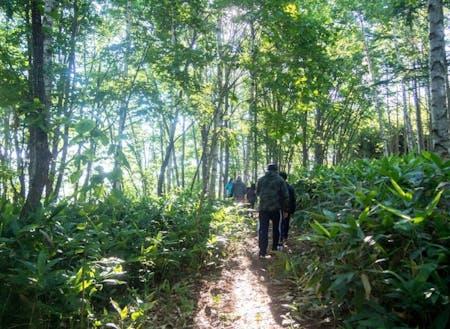 下川町の休日は近くの山に行くこともできます!