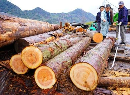 原木からどう製材するかで価値が決まる