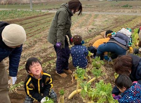 親子向けの畑ツアーの様子