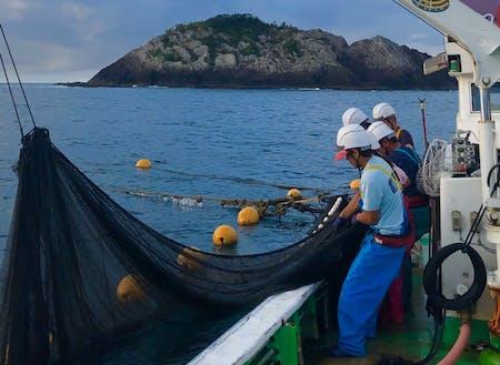 小型定置網漁業の仕事風景