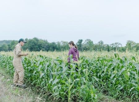 夏は農作業