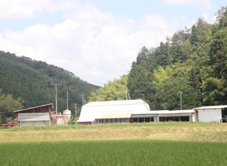 緑に囲まれた場所に位置する牛舎。