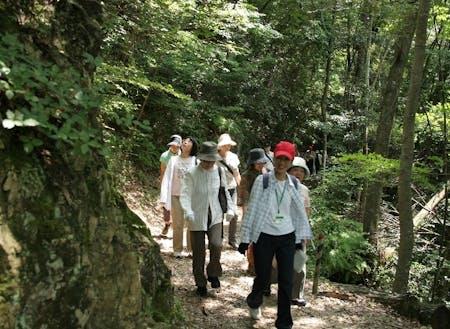 日本初の森林セラピー基地