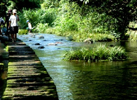 川の中に飛び石が続き、せせらぎの中を歩けます。