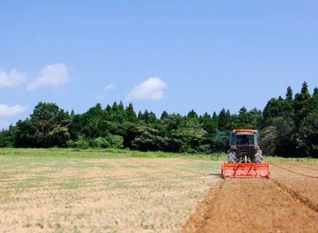 土地と環境を守ることを第一に、様々な作物を栽培しています。
