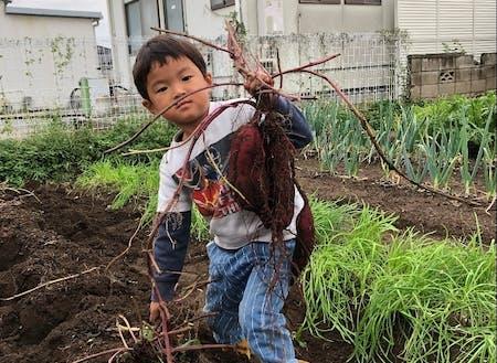 ほどよい田舎で家庭菜園も
