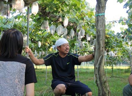 ぶどう農家の吉岡さんもサポートメンバーの1人です!
