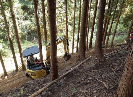 バックホウによる林道整備