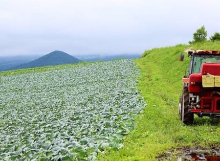 夏秋キャベツ出荷量50年連続1位の嬬恋村の雄大な自然環境