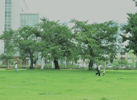 長野駅東口公園