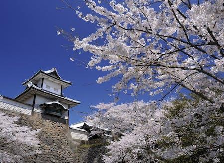 春の石川門