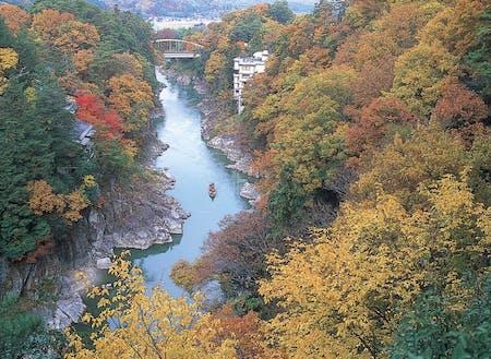 飯田市の観光地、天龍峡の紅葉