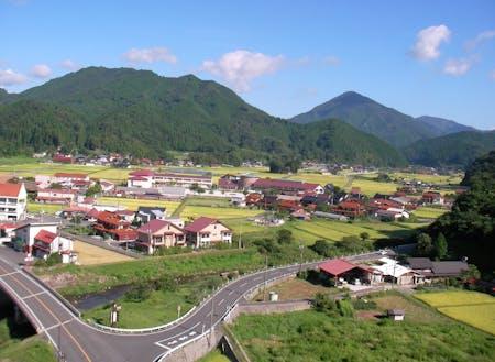 新庄村中心部、上空からの眺め