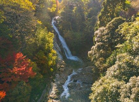 迫力満点の観音の滝