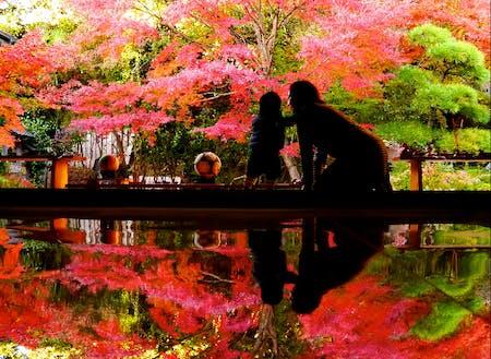 寿福寺の「逆さ紅葉」(佐世保観光コンベンション協会提供)