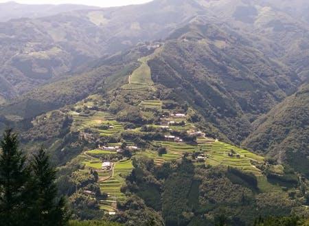 日本のマチュピチュとも呼ばれる棚田の風景
