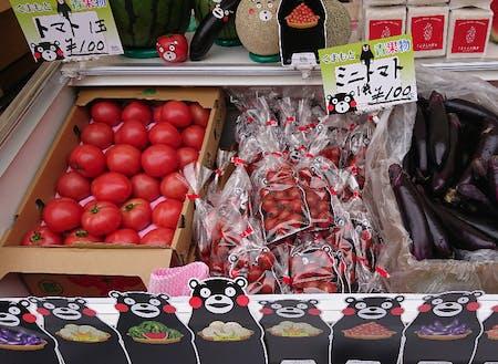 トマトの生産量は日本一