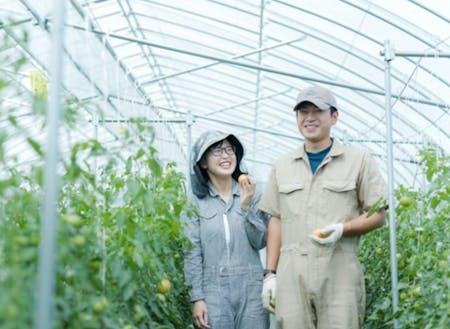 睦良田(むらた)さんご夫妻も、研修制度を利用した後、農家さんとして独立。 移住者インタビュー:小さいころに食べた下川のおいしいフルーツトマトを自分の手で作りたい~http://shimokawa-life.info/interview/interview-vol11/