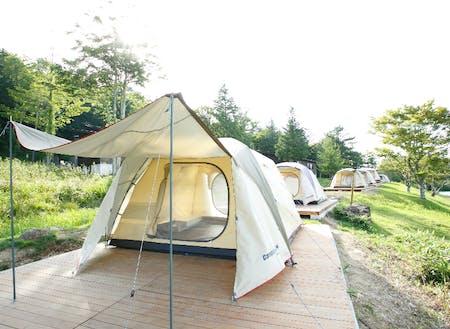 運営予定のキャンプ施設