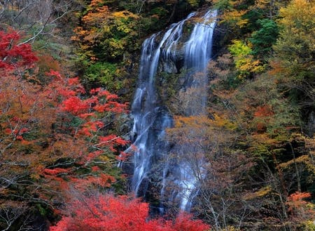 紅葉スポット「白滝」の紅葉