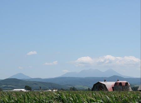 晴れた日には阿寒の山々がみえます