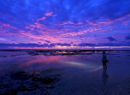 専属カメラマンによる心に訴える鹿児島の景色も必見です