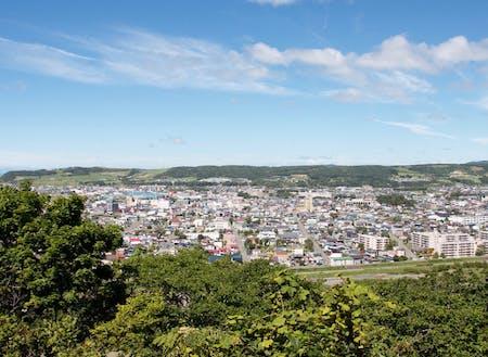 人口約22,000人の新ひだか町。市街地には商業施設などが集まる。