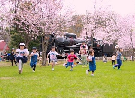 人気の桜山公園