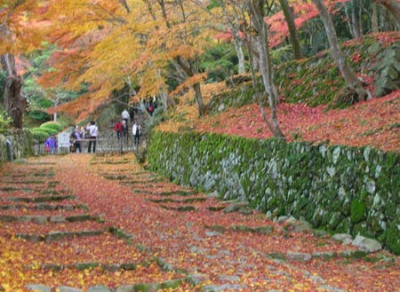 紅葉の名所近江最古級の寺院「百済寺」が近くにあります