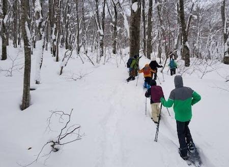 初心者でも雪の上をすいすい歩けます!普段見られない景色を見に行きましょう