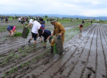 農業がとても身近なので食の大切さを感じることができます。