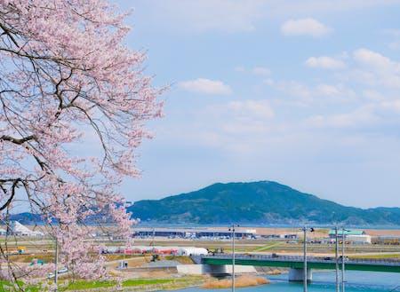 海・山・川が楽しむことができ、一次産業も盛んなまちです