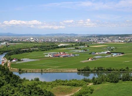 深川市の田園風景