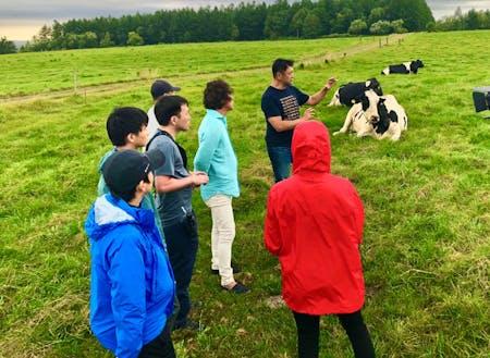 酪農や農業の現場の見学や体験などができます。