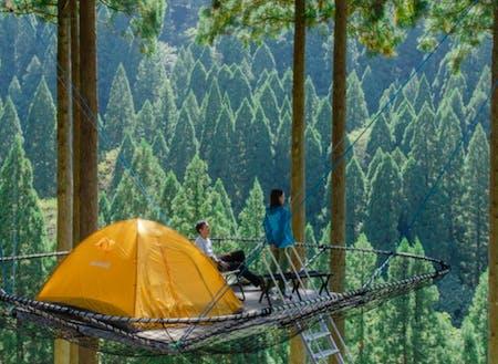 ツリーピクニックアドベンチャーいけだ 樹上テント
