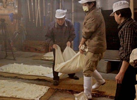 働き先の1つである、桜川酒造での仕込み仕事の様子